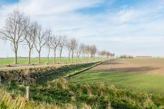 Het schilderachtige landschap van de polder in de herfst Stock Fotografie