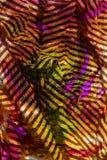 Het schilderen met Licht stock foto's