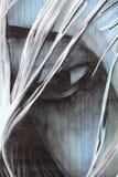 Het schilderen op muur van de bouw van straat art4 Royalty-vrije Stock Fotografie