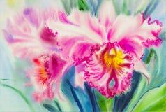 Het schilderen purpere, roze kleur van orchideebloem en groene bladeren Royalty-vrije Stock Afbeelding