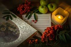 Het schilderen Stilleven met nota's, bloemen, fruit, lijsterbes over houten achtergrond Het kan worden gebruikt om pakketten, gif Royalty-vrije Stock Afbeelding