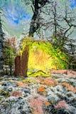 Het schilderen van betoverde boom in landschap Royalty-vrije Stock Afbeeldingen