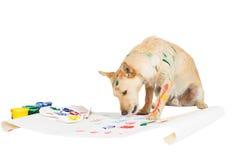 Het schilderen van de hond met zijn poot Stock Fotografie