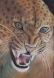 Het schilderen van de luipaard Stock Foto