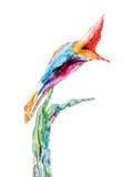 Het schilderen van de waterverf van een tropische vogel Stock Foto's