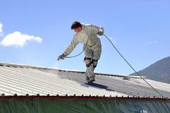 Het schilderen van het dak Stock Afbeelding