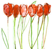 Het schilderen van het stilleven tulpen. stock fotografie