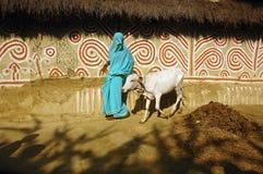 Het schilderen van Madhubani in bihar-India Royalty-vrije Stock Afbeeldingen