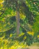 Het schilderen van Watercolour van een spar Stock Fotografie