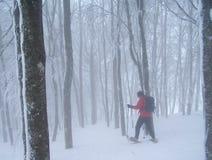 Het schoeien van de sneeuw Stock Afbeelding