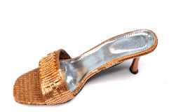 Het schoeisel van dames stock foto