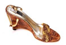 Het schoeisel van dames Royalty-vrije Stock Afbeeldingen