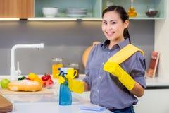 Het schoonmaken in de keuken royalty-vrije stock afbeeldingen