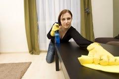 Het schoonmaken van het huis Stock Foto