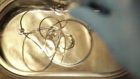 Het schoonmaken van juwelen door ultrasone klankbad stock video