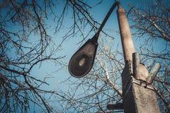 Het schot van de nacht Straatlantaarn met boom en hemel op achtergrond Stock Foto