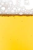 Het schot van het bier Stock Fotografie