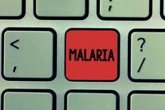 Het schrijven nota die Malaria tonen Bedrijfsfoto die Levensgevaarlijke gedragen mug demonstreren de Periodes van de bloedziekte  stock foto's
