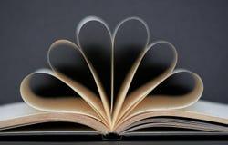 Het schrijven van boek met gouden pagina's Stock Foto