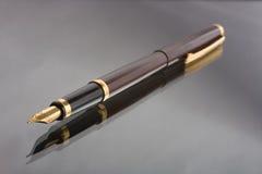 Het Schrijven van de fontein Pen Royalty-vrije Stock Afbeelding