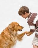 Het Schudden van Little Boy met Hond Royalty-vrije Stock Afbeeldingen