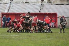 Het Scrum van het rugby royalty-vrije stock foto