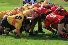 Het Scrum van het rugby stock afbeelding