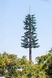Het seinhuisje van de boomvorm stock afbeelding
