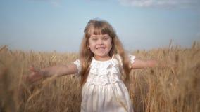 Het seizoen van de tarweopbrengst, gelukkige het glimlachen meisjeslooppas over korrelgebied aan camera met wapens uitgestrekt aa stock video