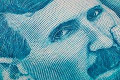 Het Servische 100 bankbiljet van de dinaramunt, sluit omhoog Het geld RSD van Servië Royalty-vrije Stock Foto