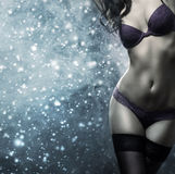 Het sexy vrouw stellen in erotische lingerie en bont Stock Afbeeldingen