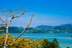 Het Shenzhen-reservoir Royalty-vrije Stock Foto's
