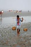 Het signaal van mobiele telefoondekking en de meeste verre delen van de Sundarbans-wildernissen, India stock foto's