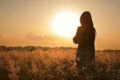 Het silhouet dat van de vrouw op de zomerzon wacht Stock Fotografie