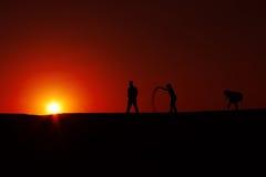 Het silhouet India van de de zomerzonsondergang Stock Afbeeldingen