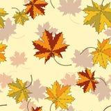 Het silhouet naadloos patroon van het esdoornblad Royalty-vrije Stock Fotografie