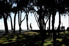 Het Silhouet van Beachside Royalty-vrije Stock Afbeelding
