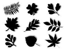 Het silhouet van bladeren Stock Foto's