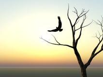 Het silhouet van de adelaar en van de Boom Royalty-vrije Stock Afbeelding