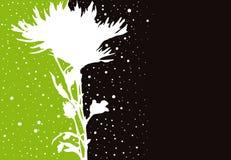 Het silhouet van de bloem Stock Afbeeldingen