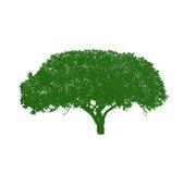 Het silhouet van de boom op witte achtergrond vector illustratie