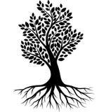 Het silhouet van de boom op witte achtergrond royalty-vrije illustratie