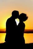 Het silhouet van de bruid en van de bruidegom Royalty-vrije Stock Afbeeldingen