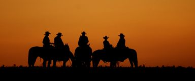 Het silhouet van de cowboy stock foto's