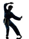 Het silhouet van de de vechtsportenmens van karatevietvodao Stock Foto