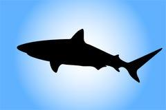 Het silhouet van de haai Stock Fotografie