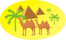 Het silhouet van de kameel royalty-vrije illustratie