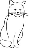 Het Silhouet van de kat Stock Foto