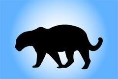 Het silhouet van de luipaard Stock Foto