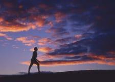 Het silhouet van de mens Royalty-vrije Stock Foto's